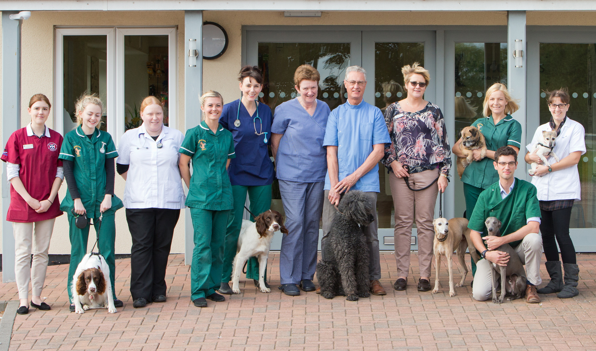 Marlow Vets Veterinary Team