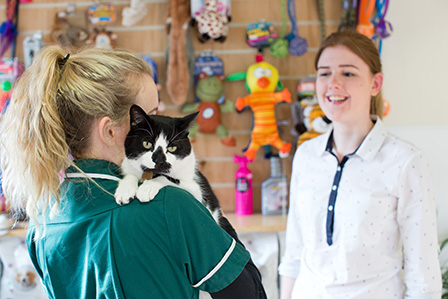 vet nurse with cat on shoulder